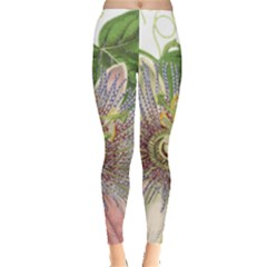 Passion Flower Flower Plant Blossom Leggings