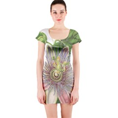 Passion Flower Flower Plant Blossom Short Sleeve Bodycon Dress