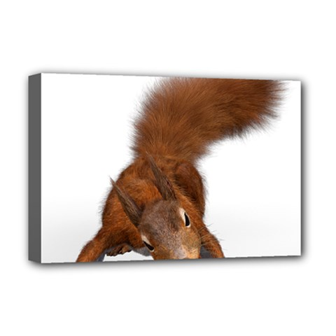 Squirrel Wild Animal Animal World Deluxe Canvas 18  x 12