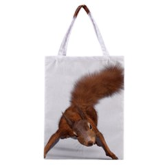 Squirrel Wild Animal Animal World Classic Tote Bag