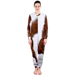 Squirrel Wild Animal Animal World Onepiece Jumpsuit (ladies)