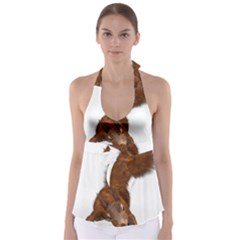 Squirrel Wild Animal Animal World Babydoll Tankini Top