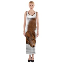 Squirrel Wild Animal Animal World Fitted Maxi Dress