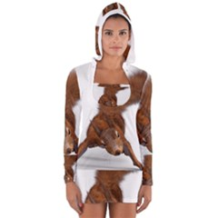 Squirrel Wild Animal Animal World Women s Long Sleeve Hooded T-shirt