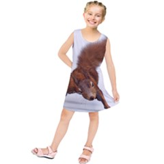 Squirrel Wild Animal Animal World Kids  Tunic Dress