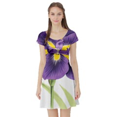 Lily Flower Plant Blossom Bloom Short Sleeve Skater Dress