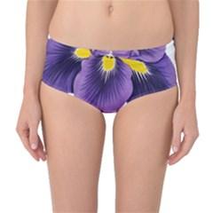 Lily Flower Plant Blossom Bloom Mid-Waist Bikini Bottoms