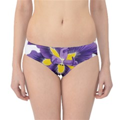 Lily Flower Plant Blossom Bloom Hipster Bikini Bottoms
