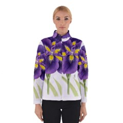 Lily Flower Plant Blossom Bloom Winterwear