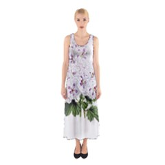 Flower Plant Blossom Bloom Vintage Sleeveless Maxi Dress