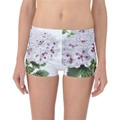 Flower Plant Blossom Bloom Vintage Boyleg Bikini Bottoms