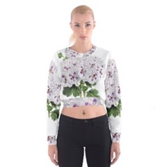 Flower Plant Blossom Bloom Vintage Cropped Sweatshirt