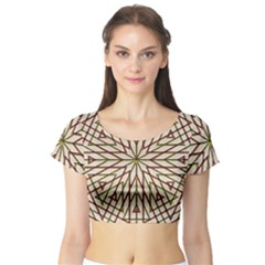Kaleidoscope Online Triangle Short Sleeve Crop Top (tight Fit)