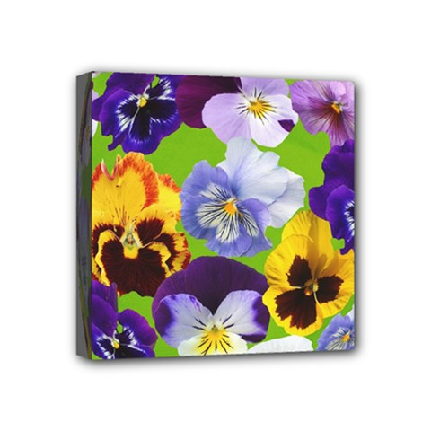 Spring Pansy Blossom Bloom Plant Mini Canvas 4  X 4