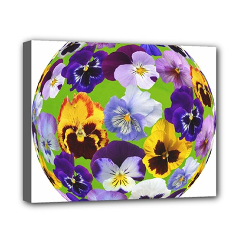 Spring Pansy Blossom Bloom Plant Canvas 10  x 8