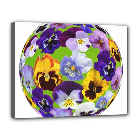 Spring Pansy Blossom Bloom Plant Canvas 14  X 11