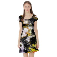 Canvas Acrylic Digital Design Short Sleeve Skater Dress