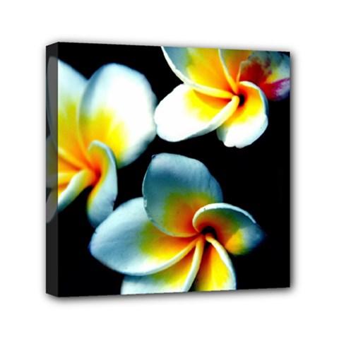 Flowers Black White Bunch Floral Mini Canvas 6  X 6