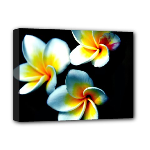 Flowers Black White Bunch Floral Deluxe Canvas 16  X 12