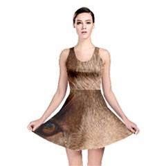 Chocolate Lab Eyes Reversible Skater Dress