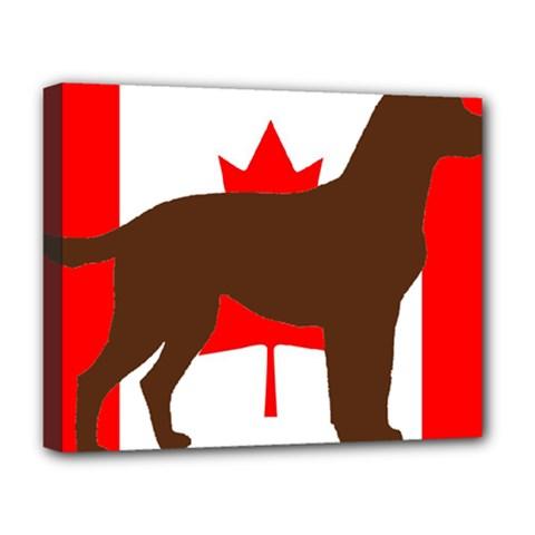 Chocolate Labrador Retriever Silo Canadian Flag Deluxe Canvas 20  x 16