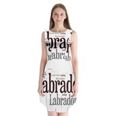 Lab Mashup Sleeveless Chiffon Dress
