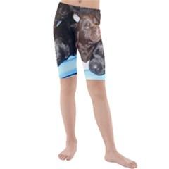 Litter Of Lab Pups Kids  Mid Length Swim Shorts