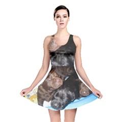 Litter Of Lab Pups Reversible Skater Dress