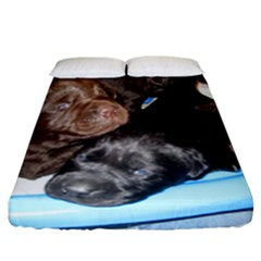 Litter Of Lab Pups Fitted Sheet (California King Size)
