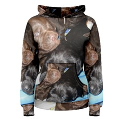 Litter Of Lab Pups Women s Pullover Hoodie