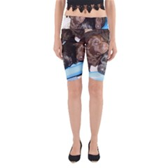 Litter Of Lab Pups Yoga Cropped Leggings
