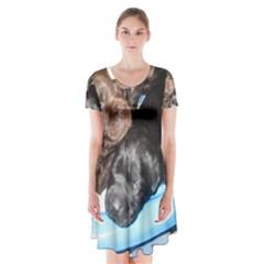 Litter Of Lab Pups Short Sleeve V-neck Flare Dress
