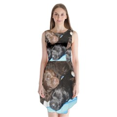 Litter Of Lab Pups Sleeveless Chiffon Dress