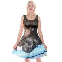 Litter Of Lab Pups Reversible Velvet Sleeveless Dress