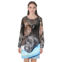 Litter Of Lab Pups Long Sleeve Chiffon Shift Dress
