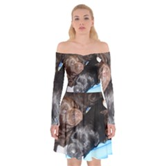 Litter Of Lab Pups Off Shoulder Skater Dress