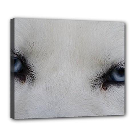 Akita Inu White Eyes Deluxe Canvas 24  x 20