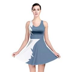 Blue White Hill Reversible Skater Dress
