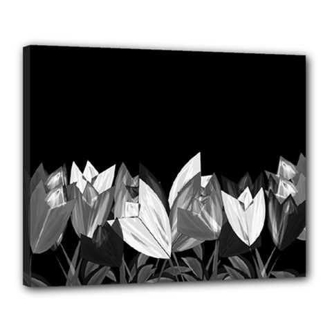 Tulips Canvas 20  x 16