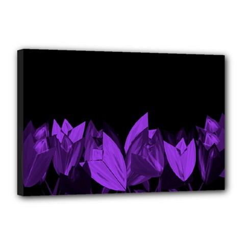 Tulips Canvas 18  x 12