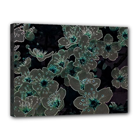 Glowing Flowers In The Dark C Canvas 16  x 12
