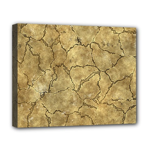 Cracked Skull Bone Surface A Deluxe Canvas 20  x 16