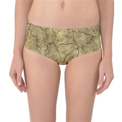 Cracked Skull Bone Surface A Mid-Waist Bikini Bottoms