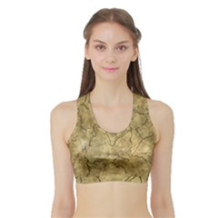Cracked Skull Bone Surface A Sports Bra with Border