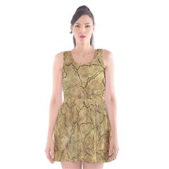 Cracked Skull Bone Surface A Scoop Neck Skater Dress