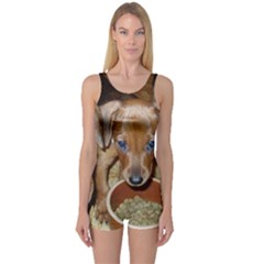 German Pinscher Puppies One Piece Boyleg Swimsuit