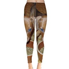 German Pinscher Puppies Leggings