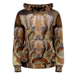 German Pinscher Puppies Women s Pullover Hoodie