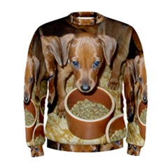 German Pinscher Puppies Men s Sweatshirt
