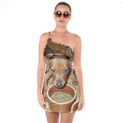 German Pinscher Puppies One Soulder Bodycon Dress
